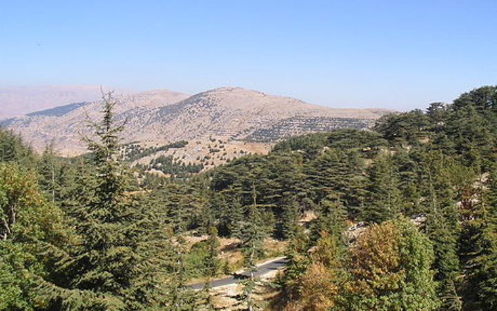 Meeting at the Biosphere Reserve Jabal Moussa to talk about education and applied research on Mediterranean UNESCO's biosphere reserves