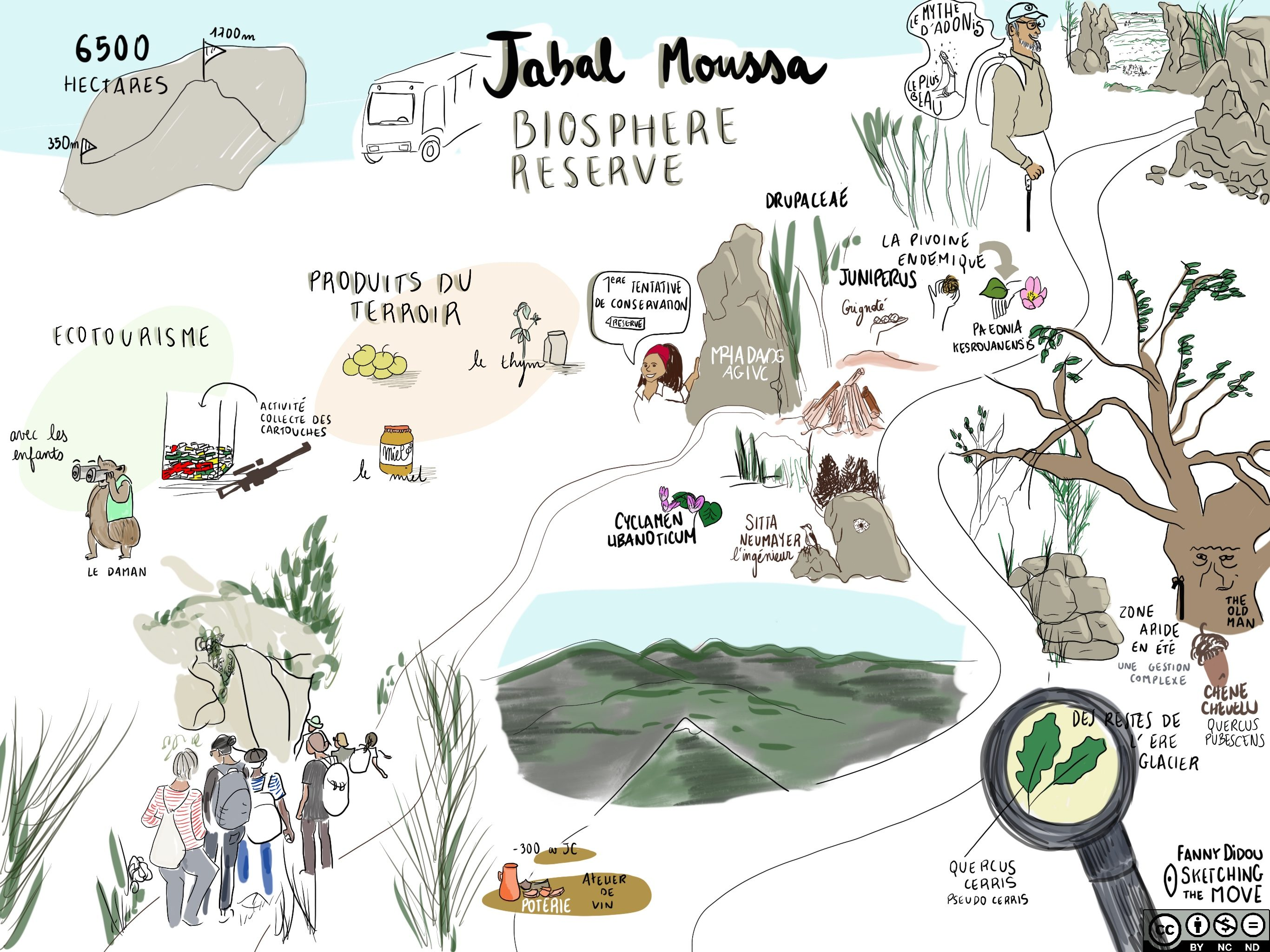 Jabal Moussa Biosphere Reserve: a Reservoir of Unique Species & Partner in the EduBioMed Project