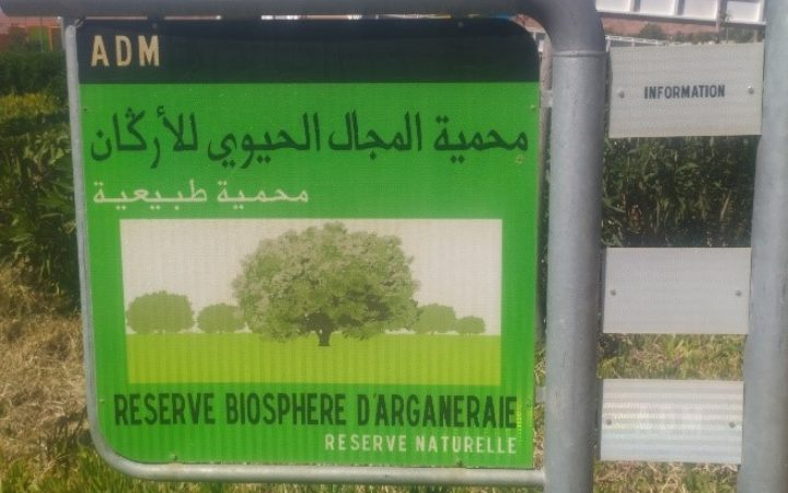 The Biosphere Reserve of the Arganeraie: workfield for doctoral researches